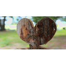 Hjertetre (Ferdighekk 125 cm+), fig. 4